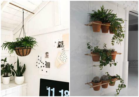 decoracion de plantas decorar con plantas dentro de casa ecodeco mobiliario