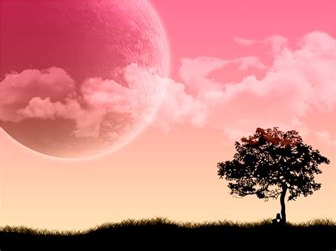 wallpaper for desktop pink pink wallpaper bestwallpaperhd