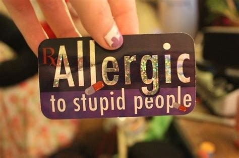 Alergi To Stupid 207 best quotes other sayings images on