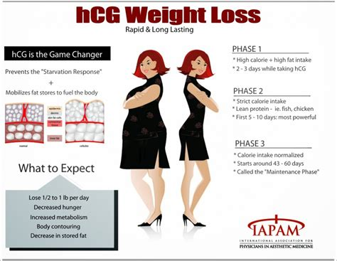 a weight management plan is based on hcg diet reviews