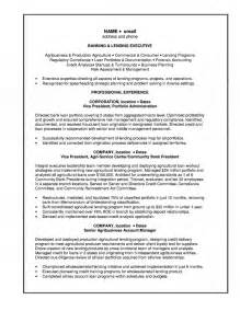 Bank Resume Exles by Sle Resume Banking