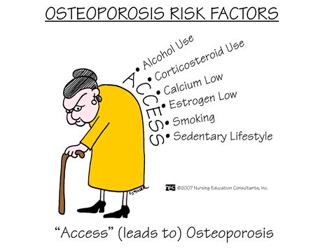 Risk Factors For Osteoporosis by The Risk Factors For Osteoporosis In