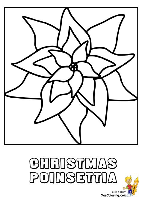 coloring page christmas flower free coloring pages of flower poinsettia