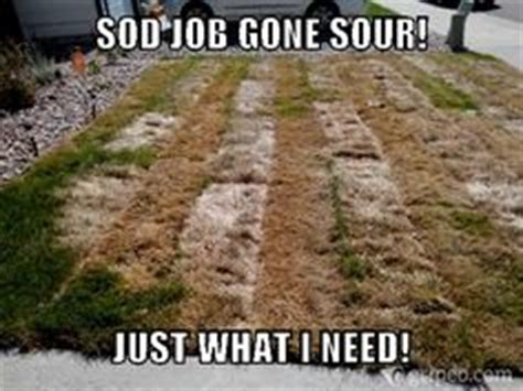 Landscaper Meme 1000 Images About Gripeo Featured Memes On
