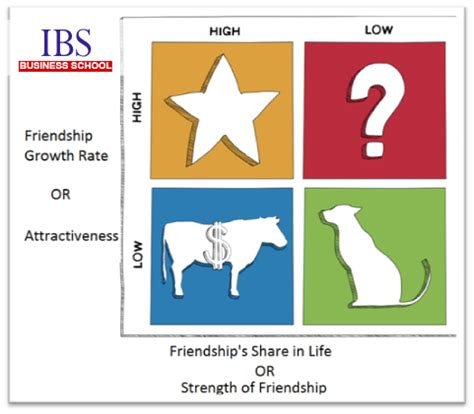 Bcg Summer Internship Mba by Bcg Matrix Of Friendships During Mba