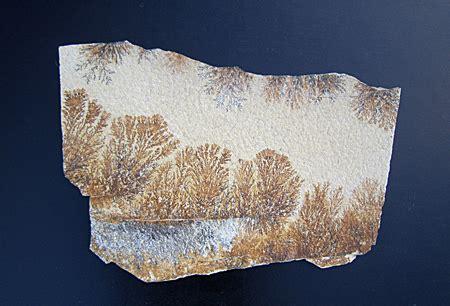 Dendrite 1 3 Kg 2bongkah dendrite slab manganese and iron dendrites topgeo