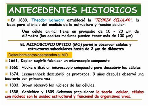imagenes antecedentes historicos rapid learning antecedentes historicos en biologia