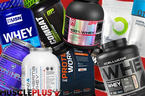 Whey Protein 2015 top 10 best whey protein powders 2018 plus