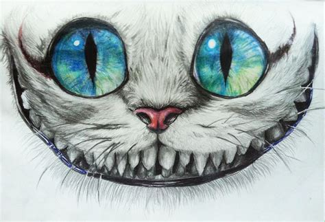 cheshire cat best 25 cheshire cat drawing ideas on
