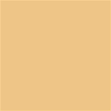 golden fleece contemporary paint by sherwin williams