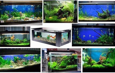spectrum led aquarium light spectrum led aquarium light 1000 aquarium ideas