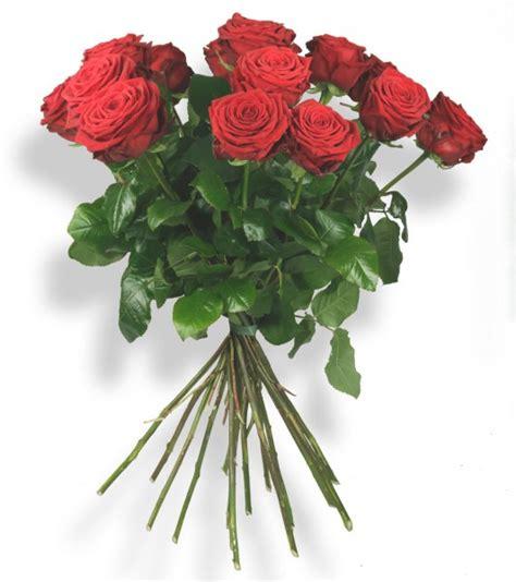 Langstielige Blumen by Langstielige Rote Blumenstr 228 U 223 E Blumenversand