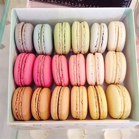 best macarons in things to do in melbourne try the best macarons in