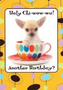chihuahua birthday cards birthdays pinterest