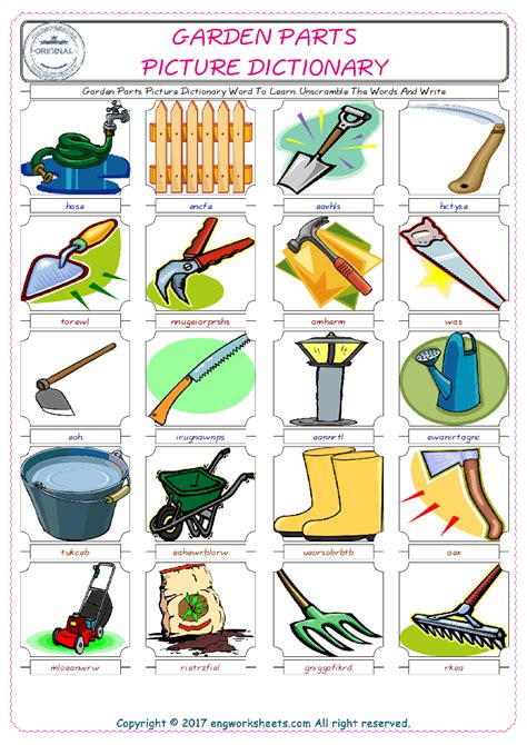 garden parts picture dictionary word  learn unscramble