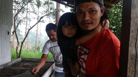 Kopi Arabika Malabar Mountain Kp7 1 survey blusukan aretta ke malabar mountain coffee margamulya pangalengan kab bandung