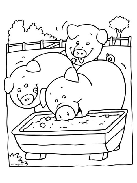 pigsty coloring page 1000 images about boerderij kleurplaten on pinterest