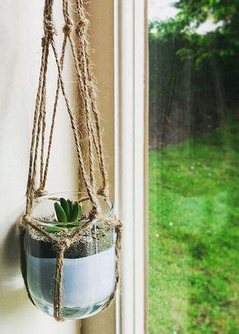 piante grasse da interno arredare con le piante grasse donna moderna