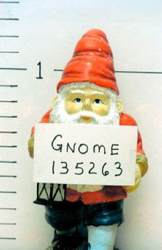 crazy lawn gnomes on pinterest garden gnomes gnomes and crazy lawn gnomes on pinterest garden gnomes gnomes and