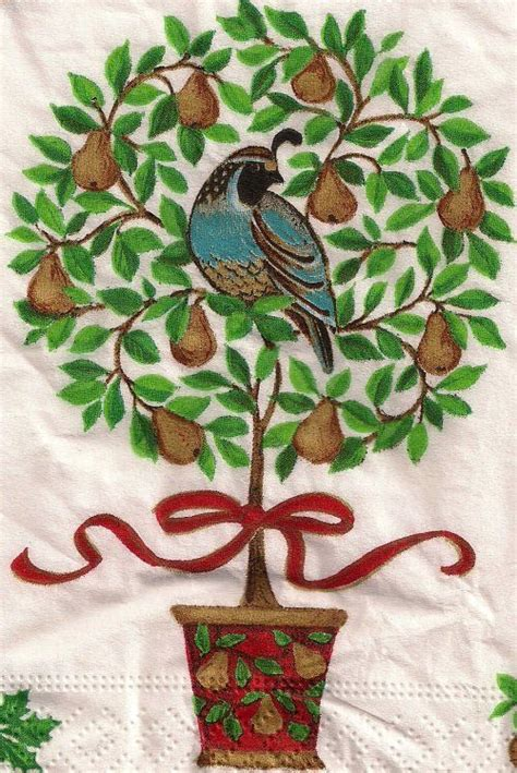 1000 images about partridge in a pear tree on pinterest
