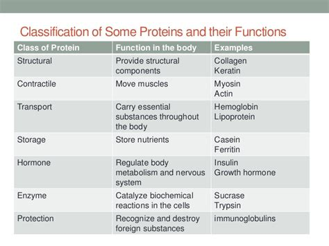 2 protein functions proteins