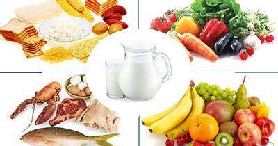 contoh makanan  sehat  sempurna