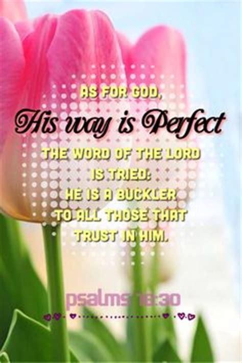 psalm 139 1 18 bible snips books psalms 139 14 i will praise thee 1 grace 43