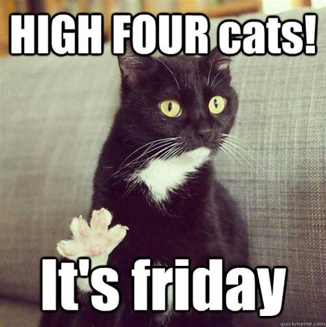Friday Cat Meme - its friday cat meme