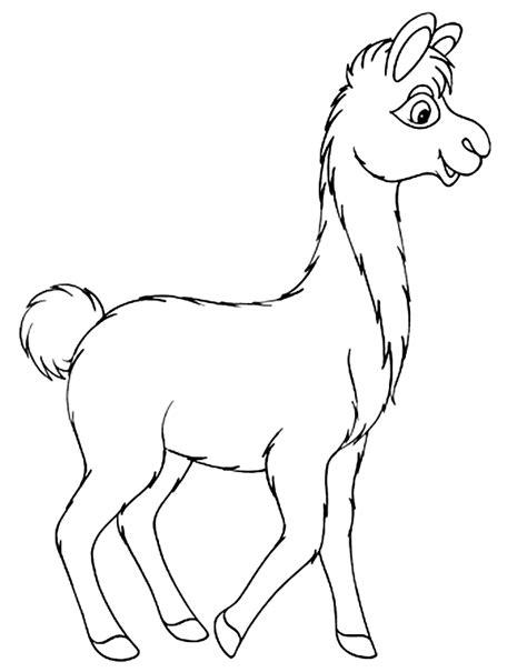 llama coloring pages llama coloring page grig3 org