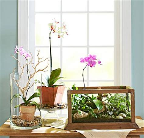 indoor planter ideas 4 ideas for stylish indoor plant displays midwest living