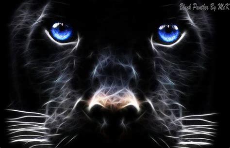Black Panther Chrome Theme Themebeta Cool Themes For Chrome 2