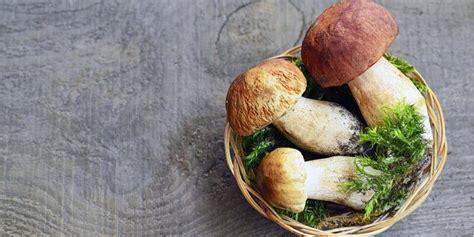funghi freschi come cucinarli di fruttaweb