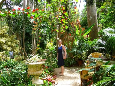 Tropical Flower Garden Locations And Photo Shoot Location Finder For Locations Caribbean