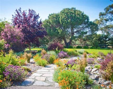 landscaping  lavender  garden design ideas