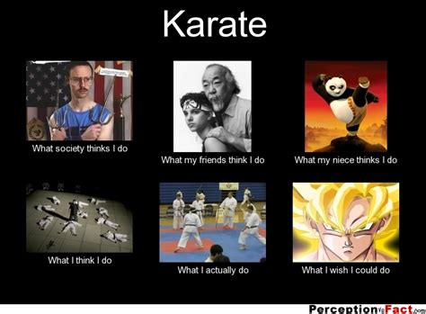 Meme Karate - karate what people think i do what i really do