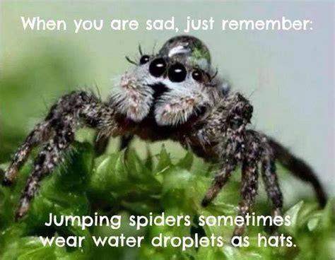 Funny Feel Better Meme - feel better memes funny image memes at relatably com