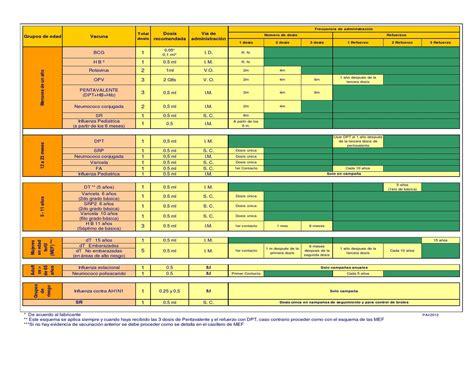cuadro de vacunas esquema de vacunaci 211 n by salud ecuador issuu