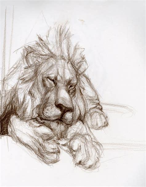 candace giancanelli animal drawings