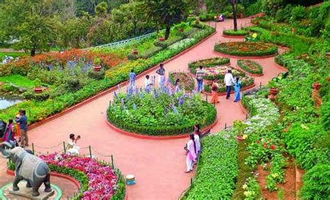 ooty botanical garden images ooty botanical gardens ooty botanical gardens photos and