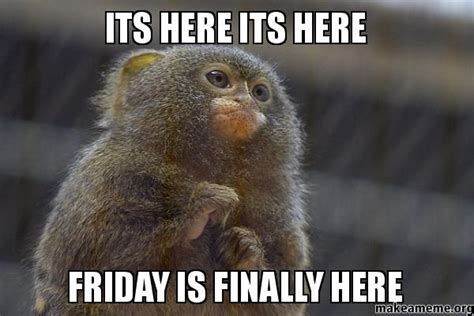 Finally Friday Meme - friday is finally here pictures photos and images for