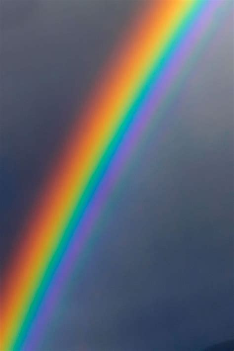 rainbow of best 25 rainbows ideas on rainbow hawaii