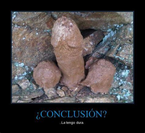 imagenes muy graciosas de todo tipo imagenes graciosas para todo tipo de gustos im 225 genes
