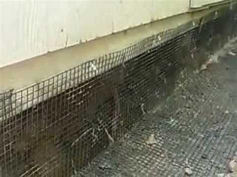 animal proof  shed  deck groundhogs skunks
