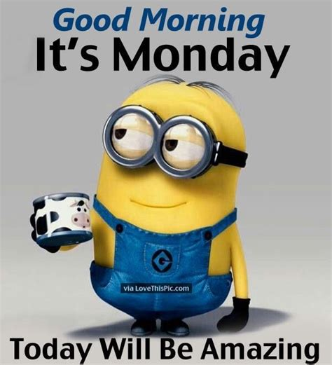 i it s monday but morning its monday today will be amazing pictures