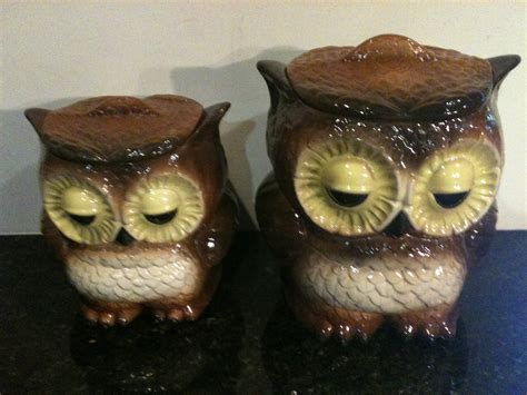 owl canisters vintage owl canister set