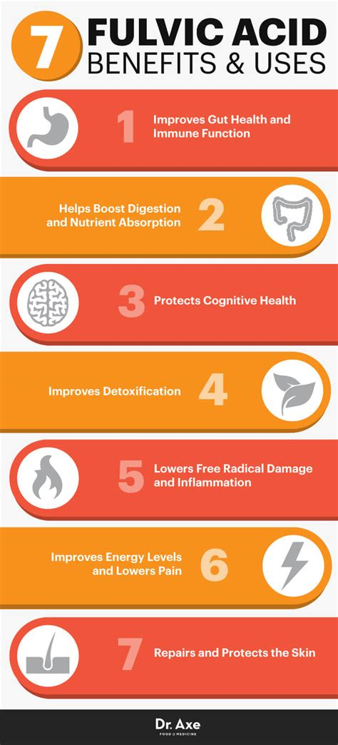 Detox Doctor Fulvic Acid by 7 Fulvic Acid Benefits Uses Improve Gut Skin Brain