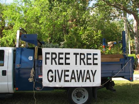 Free Government Giveaways - city of fort lauderdale fl tree give a ways and programs