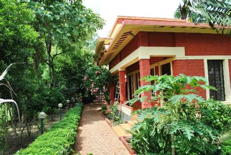 forest bungalow in west bengal the pathway leading to the sonajhuri forest picture of