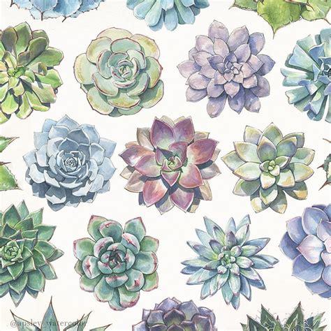Attractive Cactus Garden Ideas #7: 0855a650ddbfc378670768e1c4342d21.jpg