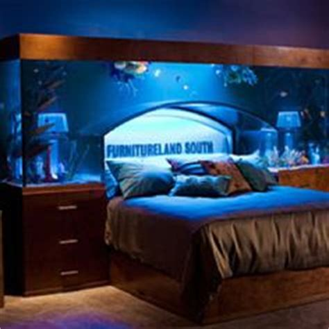 Bill Gates Living Room Whale by 1000 Images About Aquarium Fishes On Aquarium